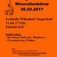 26.2.2017  Wilnsdorfer Bergbau- u. Mineralienbörse